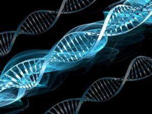 buzz DNA