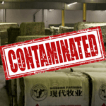 hay_china_alfalfa_gmo_contaminated
