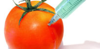 Part 1: GMOs: Gene transfer is neither unnatural nor dangerous