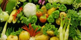 cornucopia crops