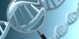genetic test magnified