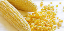 Does the Seralini corn study fiasco mark a turning point in the debate over GM food?