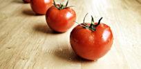 Conventional food vs. organic