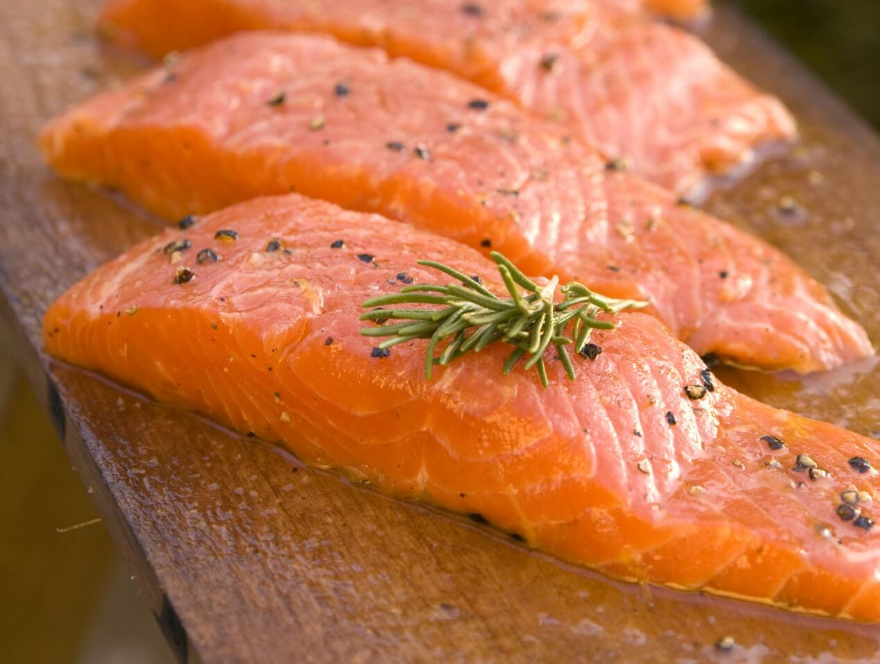 Salmon Fillets CREDIT AquaBounty e