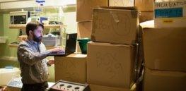hivebio boxes p photoblog