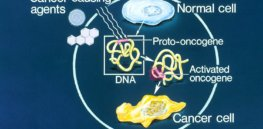 oncogene dpi RGB