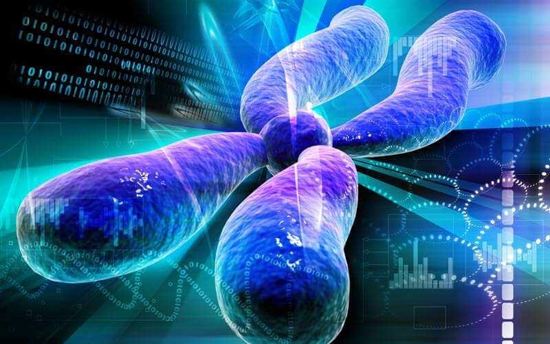 of sperm Regulation