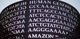 Myriad Genetics sues competitors for patent infringement