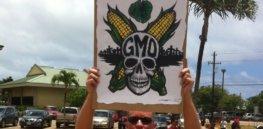 GMO protester e