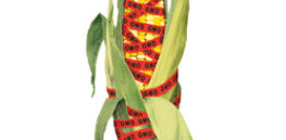 fight the gm food scare