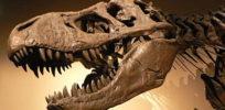 Scientists show that Jurassic Park couldn't happen