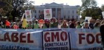 Anti-GMO sociologists mute attacks on biotech, urge greater sensitivity to cultural impacts