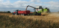 EU's anti-GMO stance reflects food security politics, not health concerns