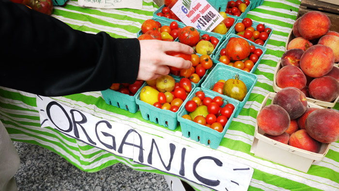 organic food disadvantage While the hype around organic food is high, you should know that there are both  advantages and disadvantages to eating organic.