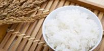 Japanese genetically altering rice varieties that could address climate change effects, allergies