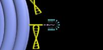 DNA nanobot