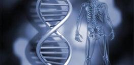 Epigenetics Revolution
