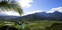 Reflections on overturning of Kaua'i's anti-GMO and pesticide restriction law