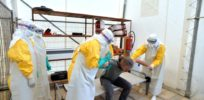 "Ebola virus response ""inadequate"" to match new potential mutations"