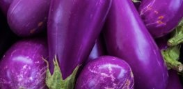 eggplants Was