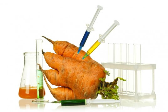 GMO 'foreign gene' fears? Breeders incorporating unknown DNA into ...