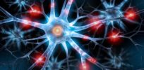 Our GPS brain: What is the 'doorway effect' and how do we orient ourselves
