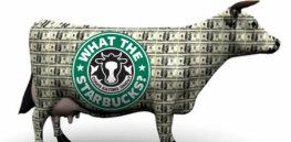 StarbucksCashCow a