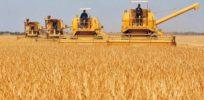 agriculturaIntensiva