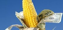Claim GMO labeling opponents outspend pro-labeling groups 50 to 1