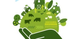 6 things agroecology can do for farming and the environment