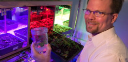 Talking Biotech: Kevin Folta on fruit breeding—and being the target of anti-GMO activists