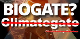 BioGate q x