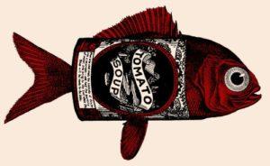 gmo-tomato-genes-in-fish-splicing
