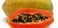 Success of independently funded GMO papaya confounds anti-tech ideologues