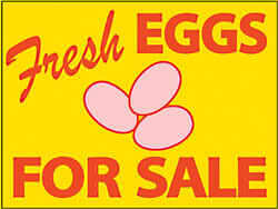 EggsForSale