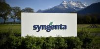 Monsanto slammed for Syngenta takeover proposal