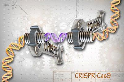 statment gene editing tech