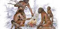 Cooked food may have given humans evolutionary edge in intelligence