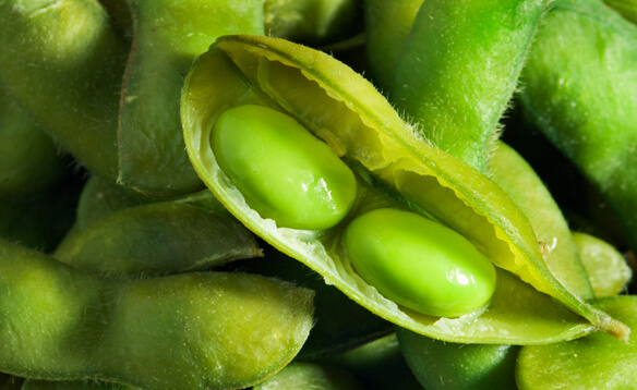 iStock soybeans
