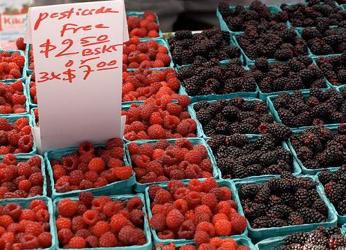 pesticide free berries thumb x