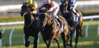 Speed gene may explain why racehorses getting faster