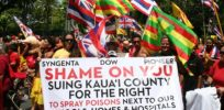 Hawaii activists marshall anecdotes to claim GMOs, pesticides linked to birth defects