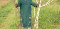 Activists threaten adoption of virus resistant GMO cassava that could rescue Africa's staple