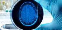 'Scientists grow human brain in a lab'--The science reality behind the headlines