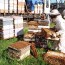 Beekeeping tends to be more on the commercial side.