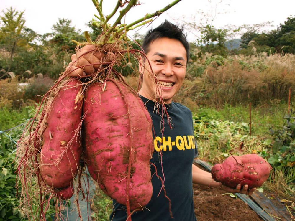big-potato-1181af98982e14c3db199e3ecbf273b3756a2d56-s1000-c85