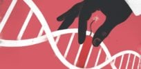 CRISPR's promise: Balancing the benefits and risks of human gene editing