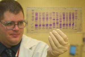 CBP_chemist_reads_a_DNA_profile