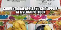 Vegan Potluck: Conventional apples v GMO apples, you decide