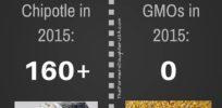 Infographic: Chipotle v GMOs food poisoning scorecard 2015